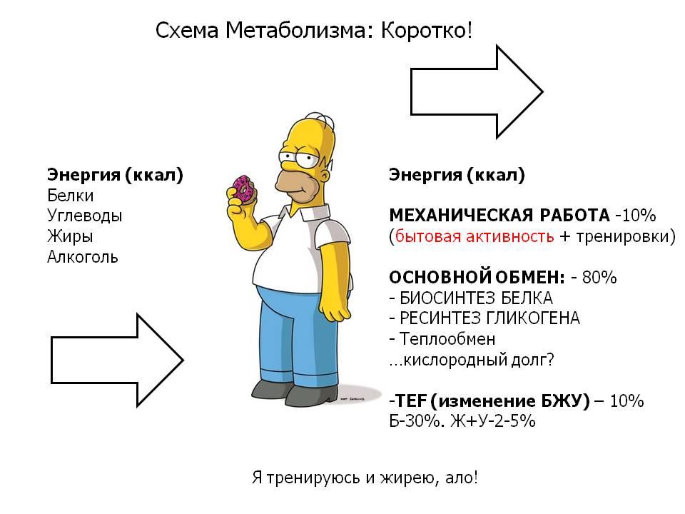 FM5-1. Урок-1